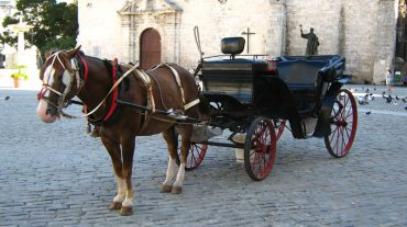 Horse-drawn carriage ride through Havana